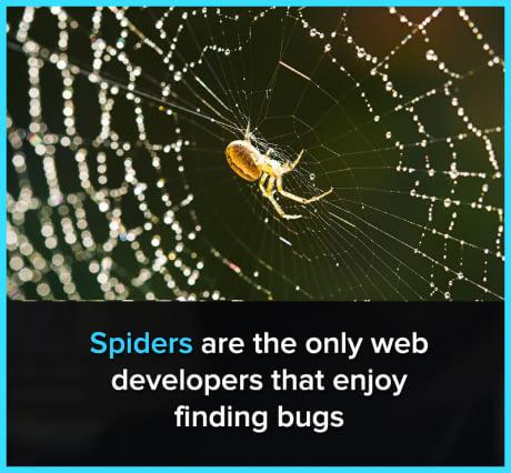 Les seuls développeurs web qui aiment trouver les bugs