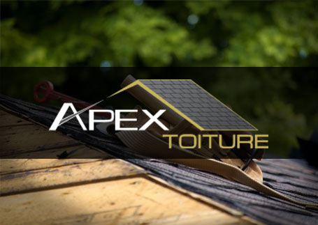 Apex Toiture
