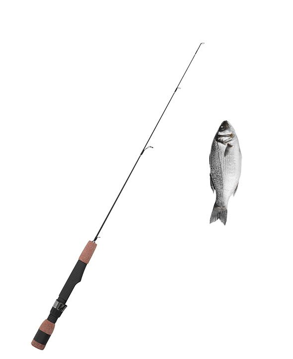 Web Design fishing positioning